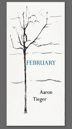 February by Aaron Tieger